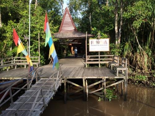Rimba Lodge, Borneo